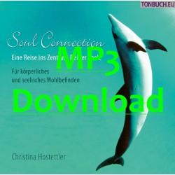 HOSTETTLER CHRISTINA - Soul Connection - MP3