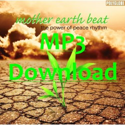 DIVERSE -  Mother Earth Beat - MP3