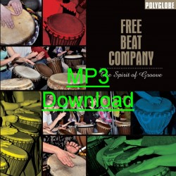 THE FREEBEAT COMPANY - The Spirit Of Groove - mp3