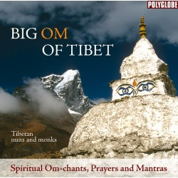 TIBETAN MONKS AND NUNS - Big Om of Tibet