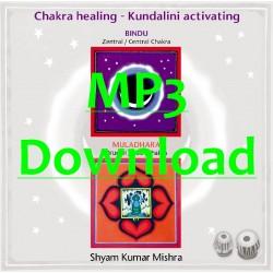 MISHRA SHYAM KUMAR - Chakra Healing, Kundalini activating CD 1 Wurzel- & Zentral Chakra - MP3