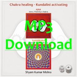 MISHRA SHYAM KUMAR - Chakra Healing, Kundalini activating CD 4 Scheitel- & Stirn Chakra - MP3