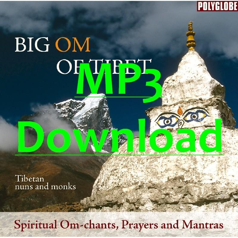 TIBETAN MONKS AND NUNS - Big Om of Tibet - MP3