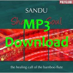SANDU - Shaman Soul - MP3