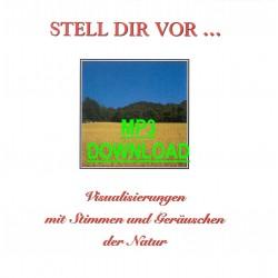 NATURGERÄUSCHE - Stell Dir...