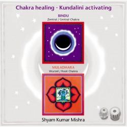 MISHRA SHYAM KUMAR - Chakra Healing, Kundalini activating CD 1 Wurzel- & Zentral Chakra